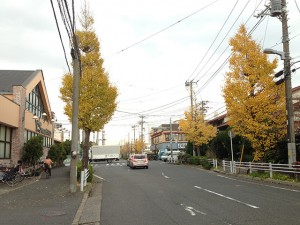 富岡から弁天の道路 ワイズマート、ライフガーデン新浦安付近