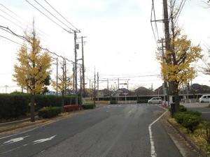 富岡から弁天の道路 見明川中央歩道橋付近