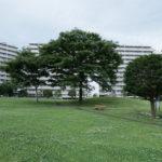 サンコーポ浦安は広い中庭があるマンションです。
