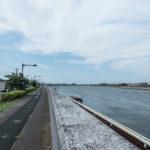 旧江戸川沿いのリバーサイドマンション。