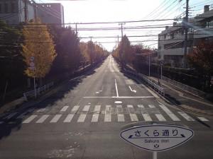 富岡から弁天の道路 境川中央歩道橋付近