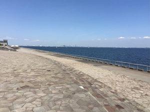 高洲海沿い3