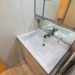 シャワー水栓付き洗面台。(内装)