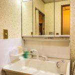 洗面台の水栓は便利なシャワー水栓です。(内装)