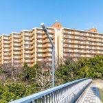 美浜東エステートは陸橋を利用すれば、信号待ちなしで新浦安駅まで行くことができます。(外観)