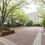 行徳ハイムの敷地内は緑が多く、日本らしい四季を感じることができます。(周辺)