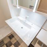 洗面化粧台の水栓は便利に利用できるシャワー水栓です。(内装)