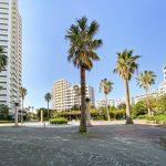 ヤシの木がある広場。暑い夏には噴水の広場になります。(周辺)