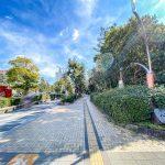 入船中央エステートはシンボルロード沿いのマンションです。新浦安駅徒歩4分と買い物に便利な立地です。(周辺)