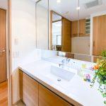 三面鏡収納付き洗面化粧台。スペースが広くすっきりと使えます。(内装)