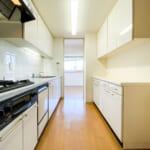 家事動線に優れた2WAYキッチン。キッチンの背面にはカップボードがあります。(キッチン)