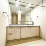 忙しい朝などにうれしいダブルボウル洗面。上部には便利な室内干しがあります。(内装)