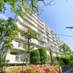 富岡エステートの敷地内には沢山の緑があり、日本らしい四季を感じることができます。(外観)