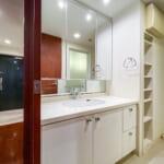 収納スペースが豊富な洗面化粧台。(内装)