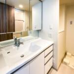ボウル一体型洗面化粧台。三面鏡裏収納・ヘルスメータースペースなど使い勝手が考えられた洗面設備です。(内装)