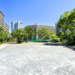 エルシティ新浦安の敷地内には公園、プール、テニスコートなどがあります。(周辺)