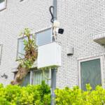 ジ・アイルズの分譲地には住人を見守る防犯カメラが設置されています。(周辺)